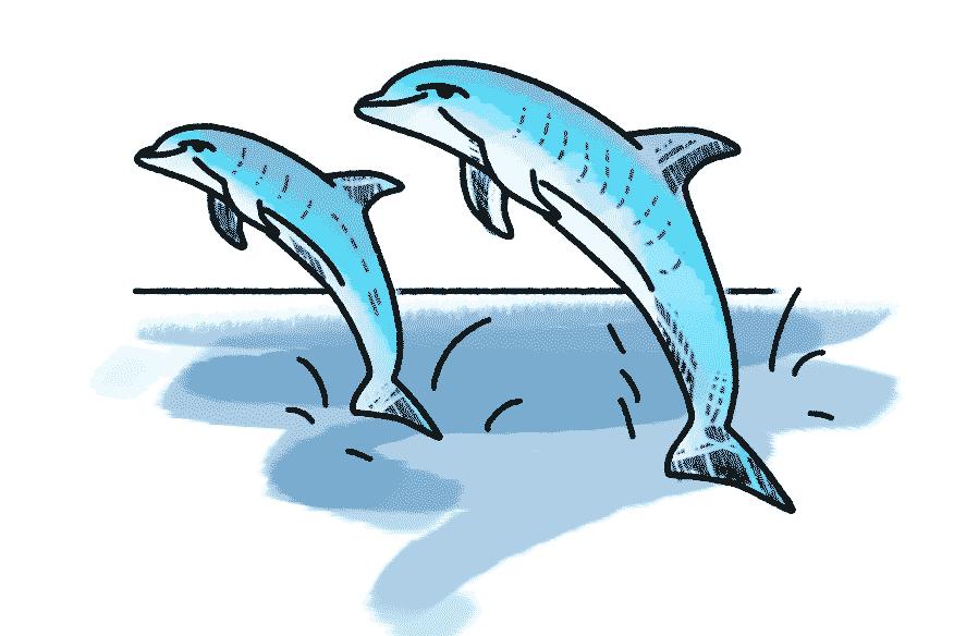 Delfin Schulranzen Motiv