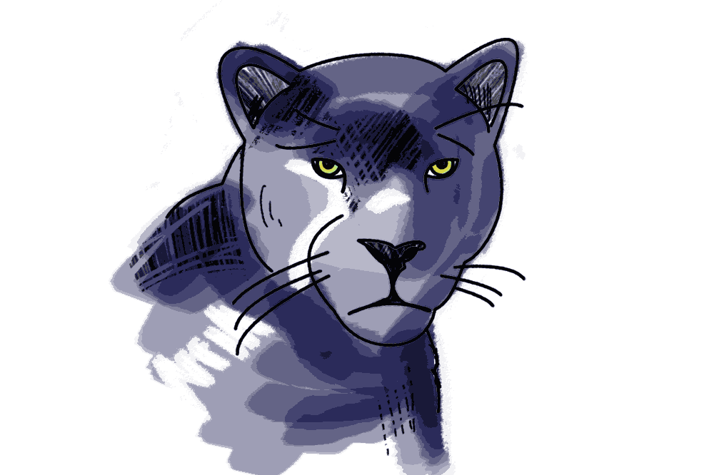 Panther Schulranzen Motiv