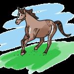 Pferd Schulranzen Motiv